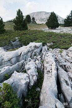 Sol calcaire découpé par l'érosion