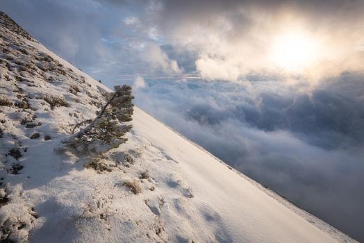 Côté Isère du mont Barral