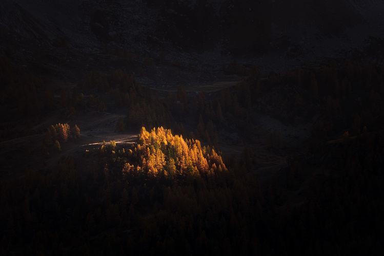 Dernières lueurs d'automne