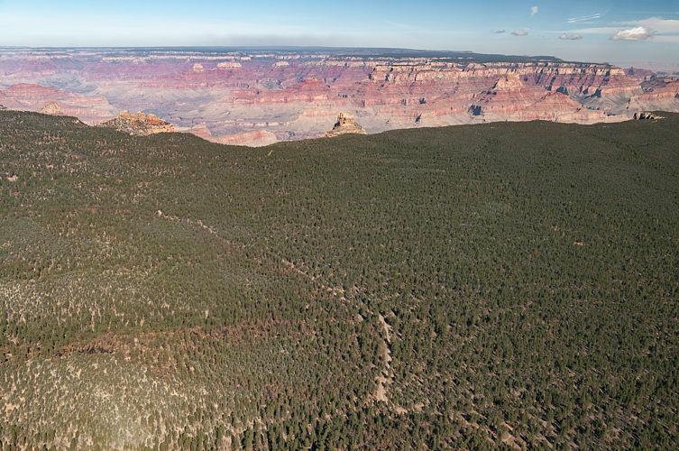 Plateau en bordure du Canyon
